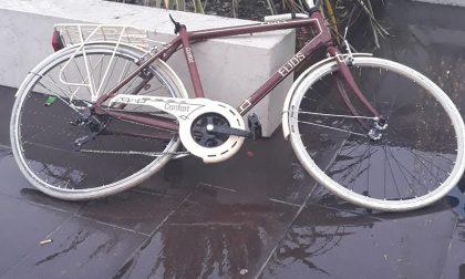 """Biciclette rubate e vandalizzate, i cittadini: """"Ragazzini arroganti"""""""