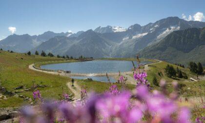 Water Music Festival, quando i laghi alpini diventano palcoscenici di concerti e proiezioni luminose