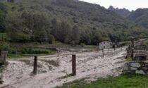 """Cristina e il Little Ranch travolto dall'acqua: """"Tanti danni, gli animali sono salvi e ora…"""""""
