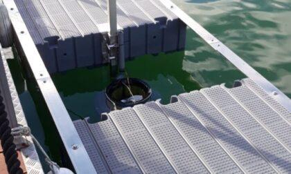 Arrivano i primi cestini 'mangia plastica' sul Lago d'Iseo
